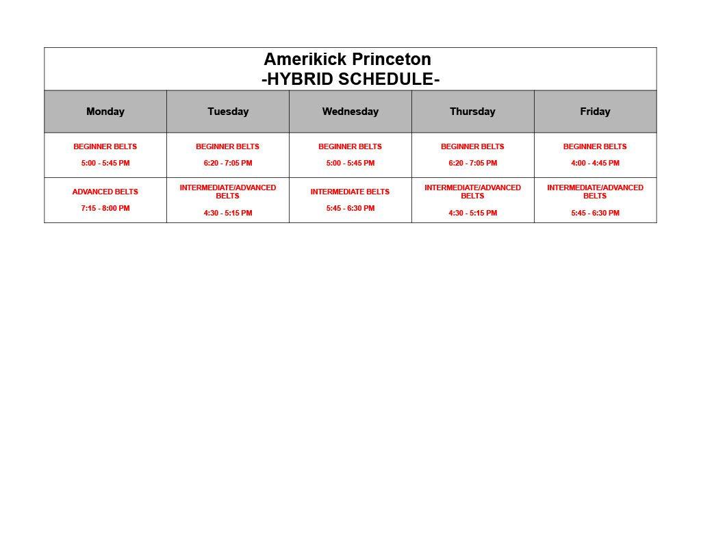 Amerikick Princeton SUMMER 2021 Hybrid Schedule1024 1, Amerikick Princeton in Lawrenceville, NJ